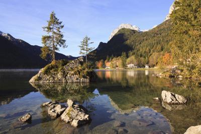 Tree Growing on Rock in Lake Hintersee, Bavaria, Germany by F. Lukasseck