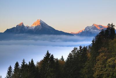 Trees and Watzmann Mountain in Autumn, Berchtesgaden National Park, Bavaria, Germany by F. Lukasseck