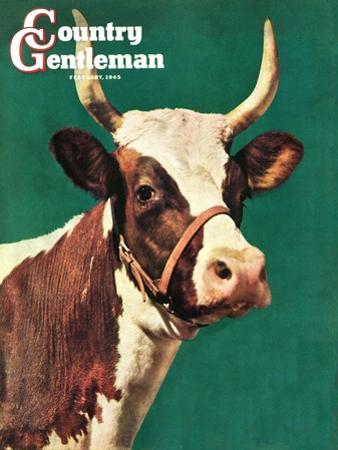 """""""Long-Horned Cow,"""" Country Gentleman Cover, February 1, 1945"""