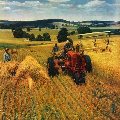 """Wheat Harvest,""July 1, 1945"