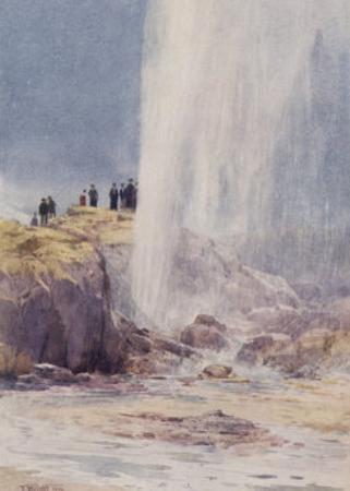 The Eruption of Wairoa Geyser in New Zealand