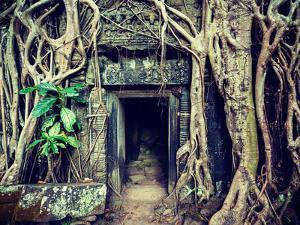 Vintage Retro Effect Filtered Hipster Style Travel Image of Ancient Stone Door and Tree Roots, Ta P by f9photos