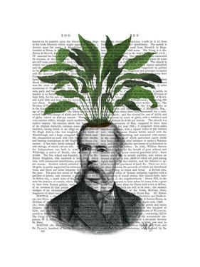 Aspidistra Head Plant Head by Fab Funky