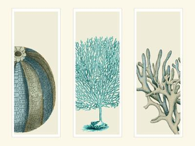 Blue Corals and Sea Urchins in 3 Panels by Fab Funky