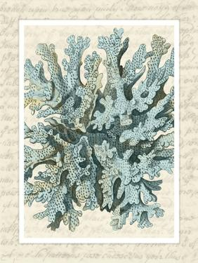 Blue Corals On VIntage Script c by Fab Funky