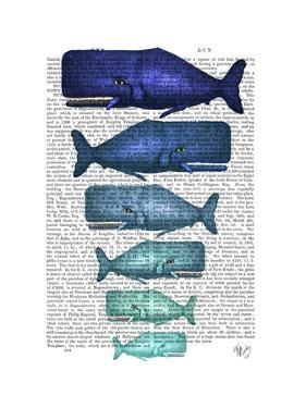 Blue Whale Family by Fab Funky