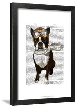 Boston Terrier Flying Ace by Fab Funky