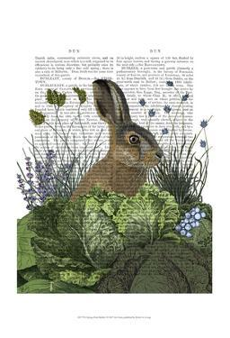 Cabbage Patch Rabbit 3 by Fab Funky
