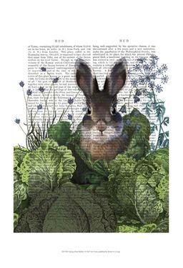 Cabbage Patch Rabbit 4 by Fab Funky