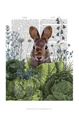 Cabbage Patch Rabbit 6 by Fab Funky