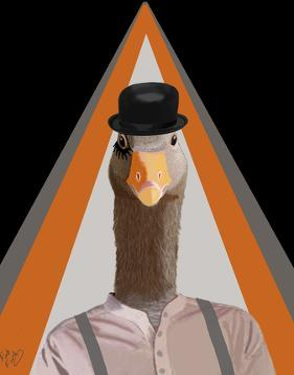 Clockwork Orange Goose by Fab Funky