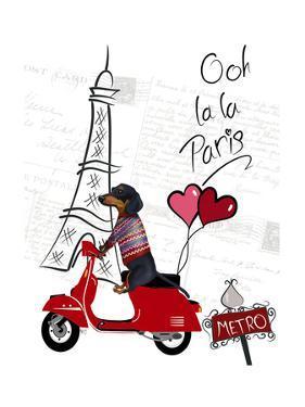 Dachshund In Paris by Fab Funky