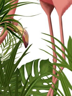Flamingo Peering by Fab Funky