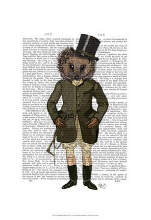 Hedgehog Rider Full by Fab Funky