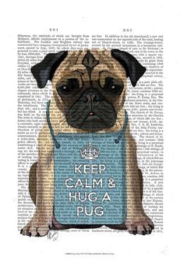Hug a Pug by Fab Funky