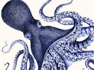 Landscape Blue Octopus by Fab Funky