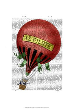 Le Pilote Hot Air Balloon by Fab Funky