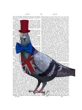 London Pigeon by Fab Funky