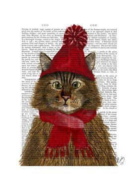 Maine Coon Cat by Fab Funky