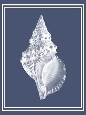 Mixed Nautical White on Indigo Blue c by Fab Funky