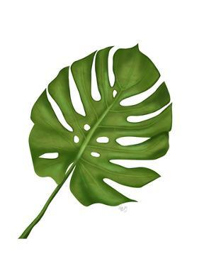Monstera Leaf 1, Green on White by Fab Funky