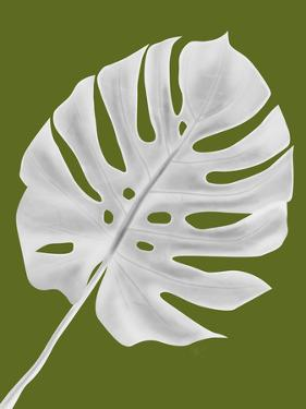 Monstera Leaf 1, White On Green by Fab Funky
