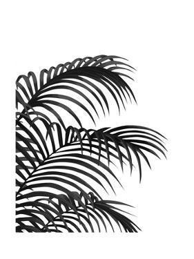 Palm Leaf 1, Black On White by Fab Funky