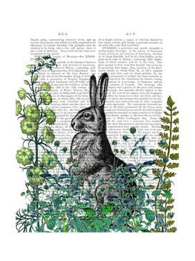 Rabbit in The Garden by Fab Funky
