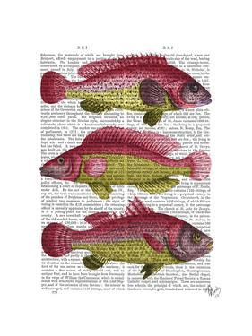 Red and Yellow Fantasy Fish Trio by Fab Funky