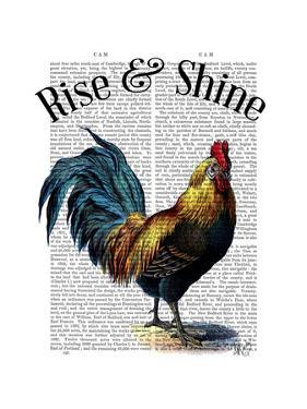Rise and Shine by Fab Funky