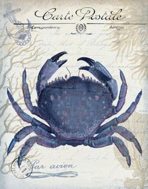 Seaside Postcard Cream e by Fab Funky