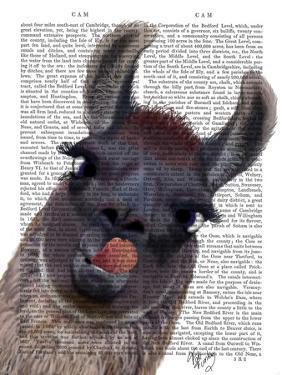 Silly Llama by Fab Funky