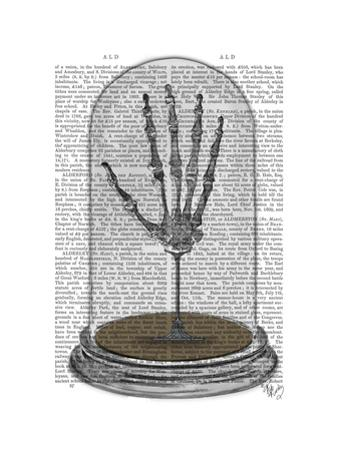 Skeleton Hand In Bell Jar by Fab Funky
