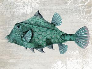 Turquoise Turret Fish by Fab Funky