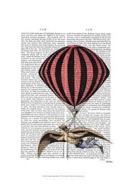 Vintage Flying Machine by Fab Funky