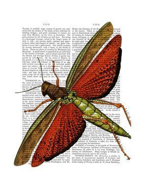 Vintage Grasshopper by Fab Funky