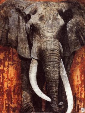 Elephant by Fabienne Arietti