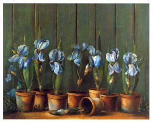 Iris Bleus by Fabrice De Villeneuve