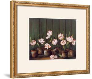 Tulipes Blanches by Fabrice De Villeneuve