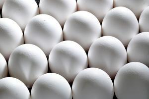 Hen-Eggs, White, Quiet Life Food Food Eggs Same, Identically, Side by Side by Fact