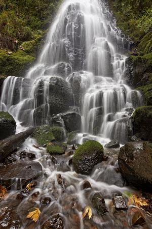 https://imgc.allpostersimages.com/img/posters/fairy-falls-in-the-fall-columbia-river-gorge-oregon-united-states-of-america-north-america_u-L-PQ8RMN0.jpg?p=0