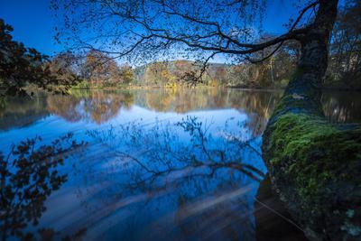 Autumn Mood in a Lake