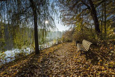 Autumn Mood on a River