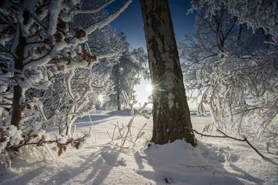 Deeply Snow-Covered Winter Scenery with Bright Sunshine, Saxony, Germany