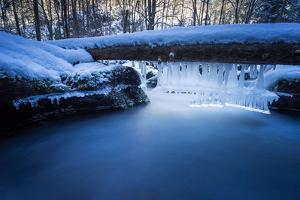 Icicles in the Stream Course in the Winter Wood, Triebtal, Vogtland, Saxony, Germany by Falk Hermann