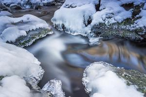 Icicles in the Stream Course in the Winter Wood by Falk Hermann