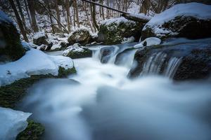Snow-Covered Stream Course in Winter Scenery, Triebtal, Vogtland, Saxony, Germany by Falk Hermann