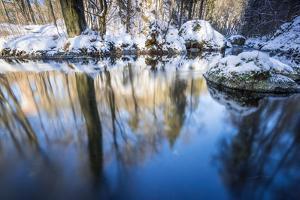 Stream Course in the Winter Wood, Triebtal, Vogtland, Saxony, Germany by Falk Hermann