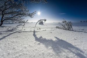 Winter Scenery with Bright Sunshine, Triebtal, Vogtland, Saxony, Germany by Falk Hermann