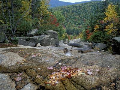 https://imgc.allpostersimages.com/img/posters/fall-foliage-appalachian-trail-white-mountains-new-hampshire-usa_u-L-P49UYN0.jpg?p=0